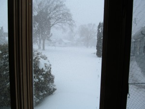 Looking south from the livingroom. Snow was really blowing at this time.