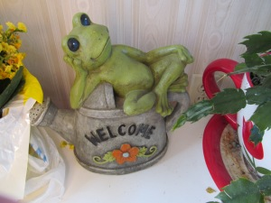 Paulina gave me this garden decoration for Mother's Day. I have gotten so many frogs over the years, it is now a family joke.