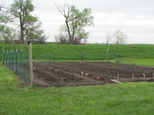 The garden is mostly planted, but we need more dirt.