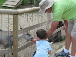 Jaxon and Grandpa feeding the goats at the zoo.