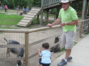 Grandpa and Jaxon feeding goats at the zoo last week.
