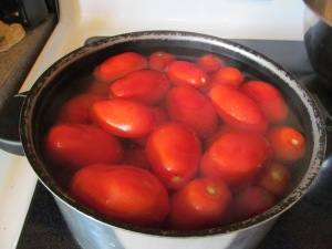 Blanching the tomatoes.
