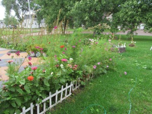 The fall flower garden