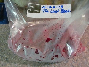 At the end of tonight, I had 9 quart bags, plus this gallon bag of beets. It is over for another year.