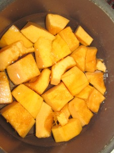 Chunks of pumpkin waiting to be cooked...