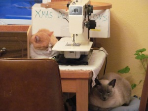 Sophia and Roger hanging out around the sewing machine.