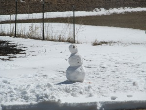 Paulina declared this to be her version of Olaf.