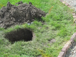 Hole outside the back door.