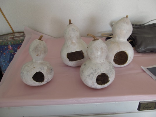 The gourds that Paulina is turning into bird houses. She needs to finish them and can sell them later.