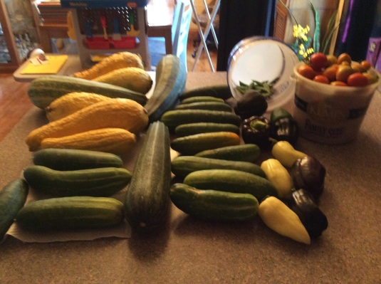 Produce currently on the counter to be used.