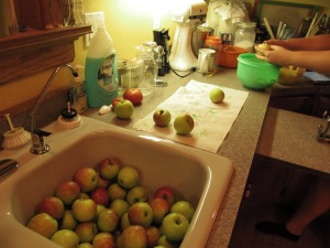 Sink full of apples, some already run through the peeler and corer.