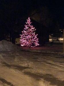 Aunt Glenda's tree.