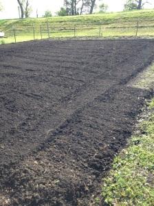 Garden ready to plant.