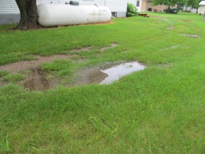 puddle behind the house