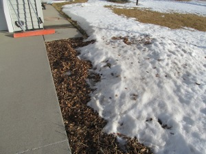 Snow is melting in sunshine.