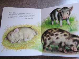 Pigs pages